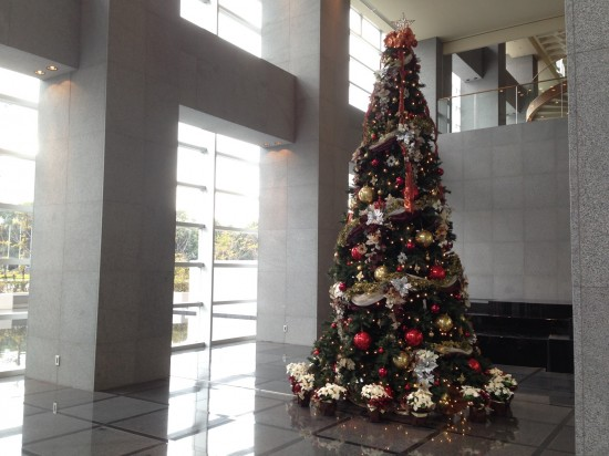 bma_tree