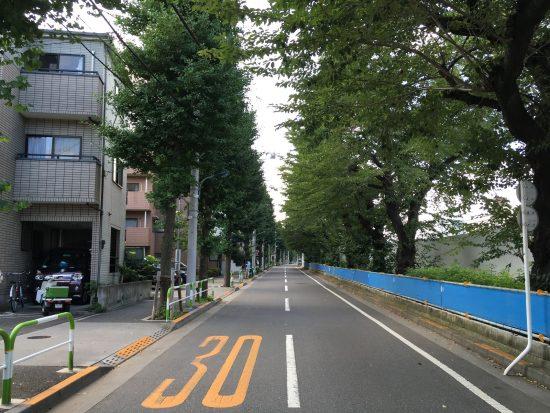the_gardens_tokyooji_west